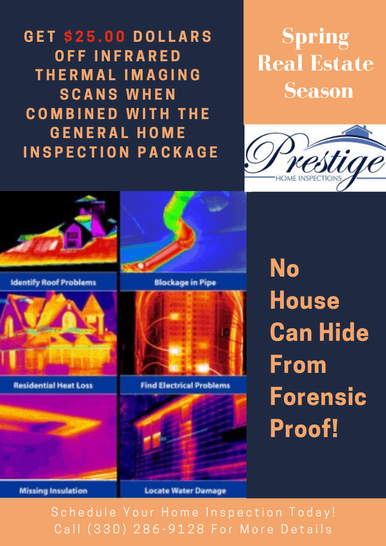 Infrared thermal Imaging Scans